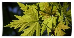 Silver Maple Hand Towel