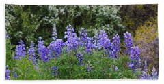 Hand Towel featuring the photograph Silvery Lupine Black Canyon Colorado by Janice Rae Pariza