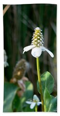 Hand Towel featuring the photograph Simple Flower by Laurel Powell