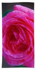 Simply A Rose Hand Towel