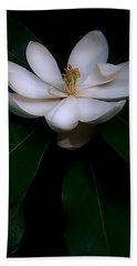 Sweet White Magnolia Bloom Hand Towel by Louise Kumpf