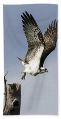 Sky Hunter Bath Towel