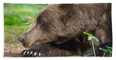 Sleeping Bear Bath Towel by Chris Scroggins