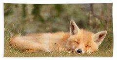Sleeping Cuty _ Red Fox Kit Hand Towel