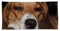 Sleepy Beagle Hand Towel by John Telfer
