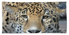 Sleepy Jaguar Bath Towel by Richard Bryce and Family