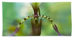 Slipper Orchid Of Selby Gardens Hand Towel