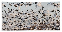 Snow Geese Takeoff From Farmers Corn Field. Hand Towel