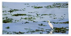 Snowy Egret Hand Towel by Mike Robles