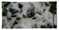 Bath Towel featuring the photograph So Much For An Early Spring by David S Reynolds