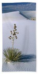 Soaptree Yucca In Gypsum Sand White Hand Towel