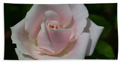 Hand Towel featuring the photograph Soft Pink Rose by Jeannie Rhode