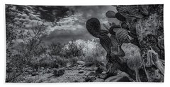 Hand Towel featuring the photograph Sonoran Desert 15 by Mark Myhaver