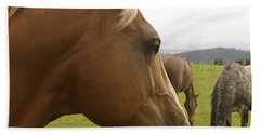 Hand Towel featuring the photograph Sorrel Horse Profile by Belinda Greb