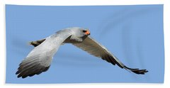 Southern Pale Chanting Goshawk In Flight Hand Towel