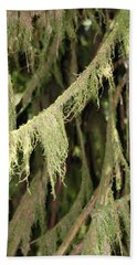 Spanish Moss In Olympic National Park Bath Towel by Connie Fox