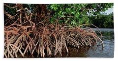 Spider Mangroves Oro Bay Hand Towel