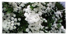 Hand Towel featuring the photograph Spirea Bridal Veil by Barbara Griffin