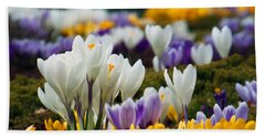 Hand Towel featuring the photograph Spring Crocus by Dianne Cowen