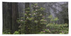 Spring In The Redwood National Park Hand Towel