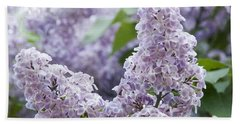 Spring Lilacs In Bloom Hand Towel by Juli Scalzi