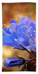 Spring Wildflowers - The Desert Bluebells Hand Towel