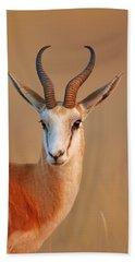 Springbok  Portrait Hand Towel