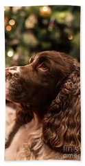 Springer Spaniel Hand Towel by Matt Malloy
