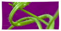 Bath Towel featuring the photograph Squash Tendril Macro by Sandra Foster