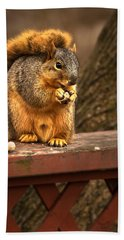 Squirrel Eating A Peanut Bath Towel