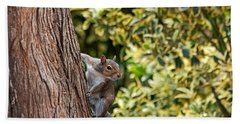 Bath Towel featuring the photograph Squirrel by Kate Brown