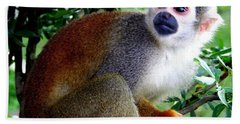 Bath Towel featuring the photograph Squirrel Monkey by Laurel Talabere