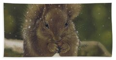 Squirrel Nutkin Bath Towel