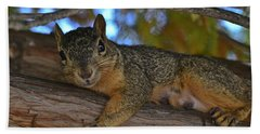 Squirrel On Watch Hand Towel