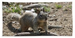 Squirrel Play  Hand Towel