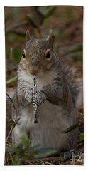 Squirrel With His Obo Hand Towel