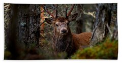 Stag In The Woods Hand Towel