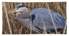 Stalking Fish In The Reeds Hand Towel by Allan Levin