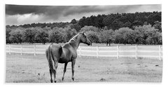 Stormy Pasture Bath Towel