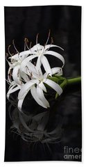 Hand Towel featuring the photograph String Lily #1 by Paul Rebmann