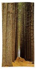Sugar Pine Walk Hand Towel
