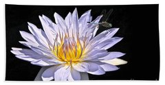 Summer Magic -- Dragonfly On Waterlily On Black Hand Towel