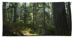 Summer Pacific Northwest Forest Hand Towel
