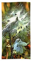 Hand Towel featuring the photograph Summer Seeds - Milkweed by Adam Olsen
