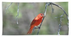 Summer Tanager Hand Towel