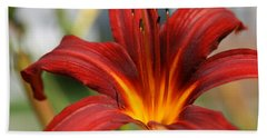 Bath Towel featuring the photograph Sunburst Lily by Neal Eslinger