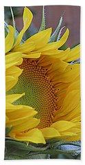 Sunflower Awakening Hand Towel by Kay Novy