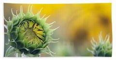 Sunflower Bloom Hand Towel