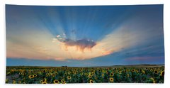 Sunflower Field At Sunset Hand Towel by Jim Garrison