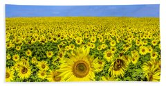 Sunflower Field Hand Towel